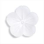 プラスチックパーツ / アクリルフラワー 5弁花(631) / CR / 約18mm
